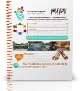 Programa INGEMO 2016