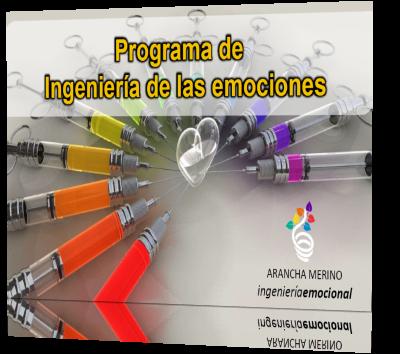 Programa de Ingienería Emocional en la Empresa